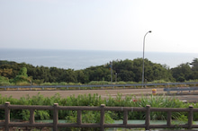 陶芸屋黎明(れいめい)の      日記と商品-nadati tanihama nihonkai 1