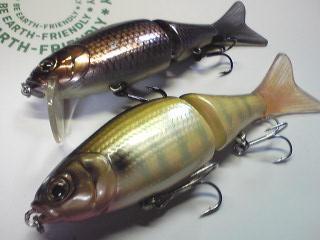 一魚専心-8311