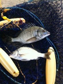 組合長の紀州釣り紀行