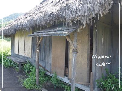 Nagano Life**-セット