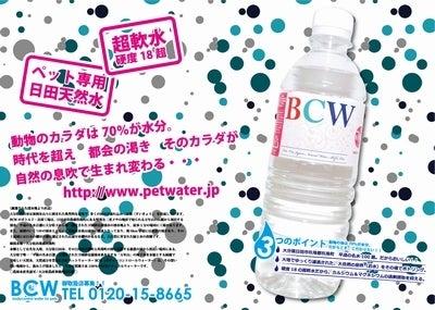 BCWのブログ