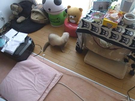 みゆみんのブログ