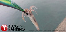 D_Groove Blog/No Fishing No Life.-BLOGRANKING230