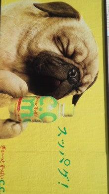 大畠美咲の「元・引きこもりだけどレスラーです」-110906_1116~01.jpg