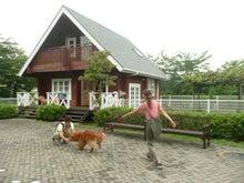 東北動物レスキュー 長崎の保健所の命を救う会の代表のブログ-トトロ再会