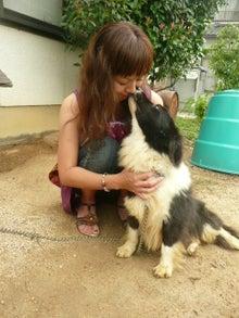 東北動物レスキュー 長崎の保健所の命を救う会の代表のブログ-栄吉