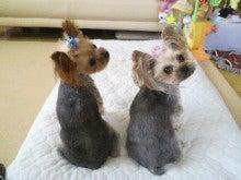 北斗の犬-2011091213510000.jpg