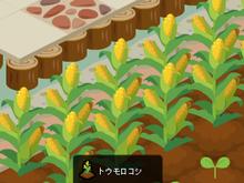 『ほうれんそう』日記