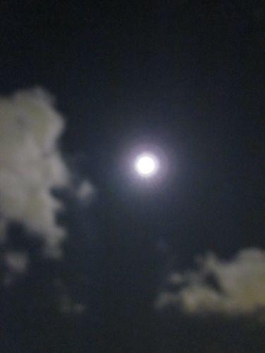 占いは幸せになるためのツール みさきのゑHAPPYになるブログ-中秋の名月&満月