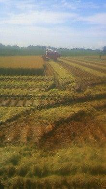 農業ビトNAOKAZUの日記-201109141156000.jpg