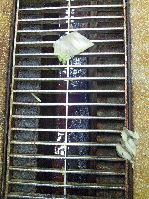 害虫・害獣から街を守るPCOの調査日記-食品残渣1