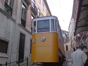 グロリア線1