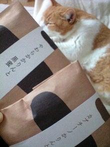 ずれずれブログ…湘南で猫と暮らせば…-110917_1412~0001.jpg
