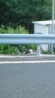 shimoshimoのつぶやき-201109181802000.jpg