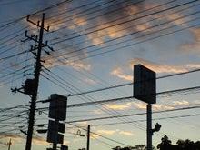 きじとらのブログ-NEC_0512.jpg