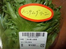 普通なんじょ-2011092412330000.jpg