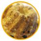 $金沢のおいしいパン【Su Franche】スーフランシュ-渋皮付きマロンとケシの実のデニッシュ