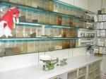 syunsukeのブログ-調剤室