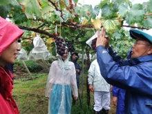 $ぶどう農家を応援する『ぶどうの丘 田畑の楽校(はたけのがっこう)』活動ブログ