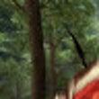 【跳緋獣】樹上の民