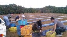 川田農園 ブログ-111004_1406~010001.jpg