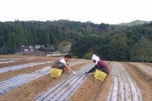 川田農園 ブログ