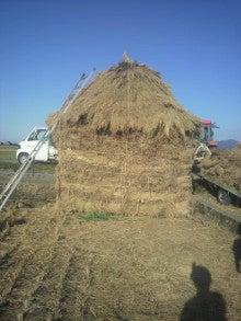 ジャンボ西瓜くんのブログ-2011100415380000.jpg
