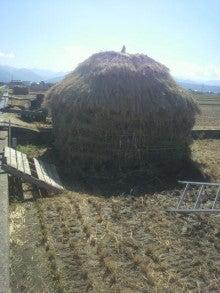 ジャンボ西瓜くんのブログ-2011100410520000.jpg