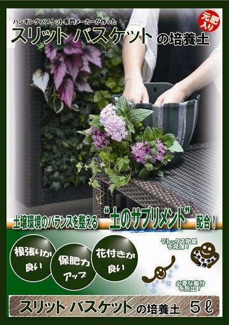 壁面緑化などの緑化ブログ:グリーンマン