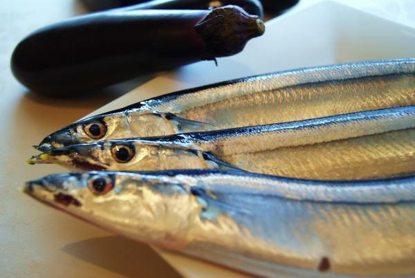 食べて飲んで観て読んだコト+レストラン・カザマ-秋刀魚
