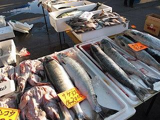 晴れのち曇り時々Ameブロ-朝市で売られていた旬の魚