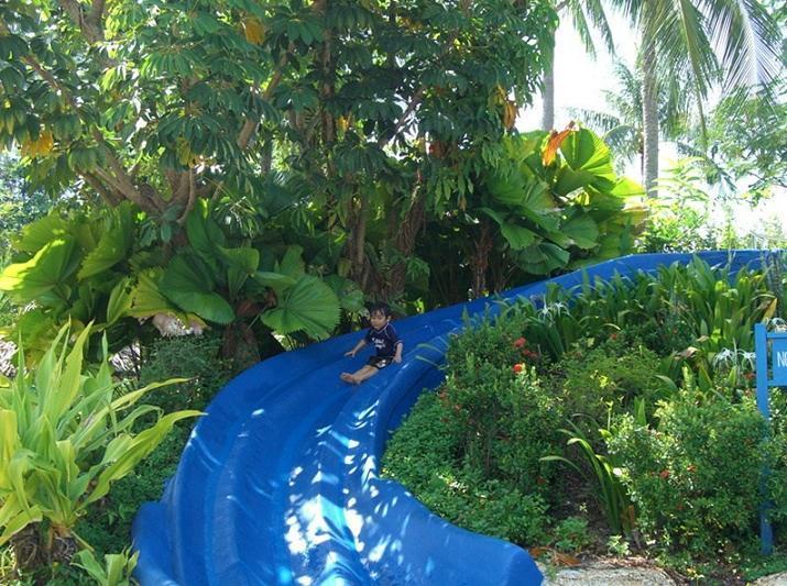 子連れdeペナン島 ゴールデンサンズホテルのプール ...