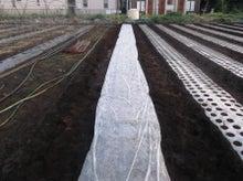 後藤農園-2010-10-10-3