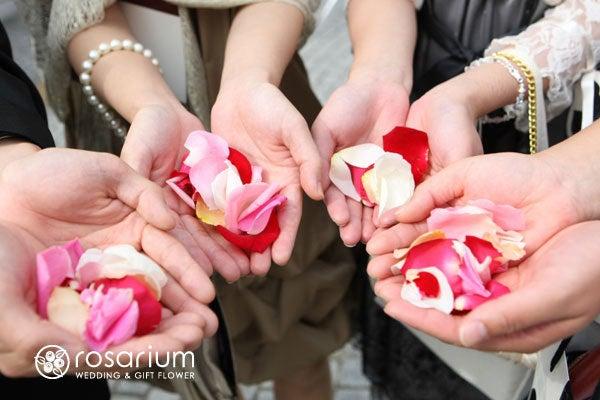 ロザブロ  ウェディングとギフトのお花とワタシ-rosarium