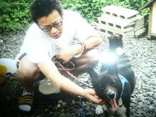 東北動物レスキュー 長崎の保健所の命を救う会の代表のブログ-kurosuke