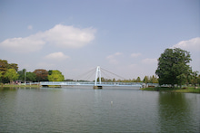 毎日はっぴぃ気分☆-反対側から望む水元大橋
