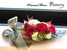 Plumerry(プルメリー)プリザーブドフラワースクール (千葉・浦安校)-ブラウンリーフ  プリザーブドフラワー