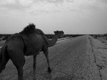自転車世界横断!!TERU-TERU project-Mauritania roads06