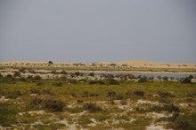 自転車世界横断!!TERU-TERU project-Mauritania roads05