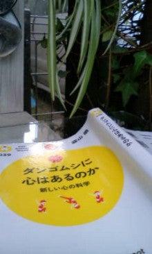 ジイジイのつぶやき! -20111023065607.jpg