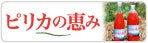フレンズのブログ-pirica_bn