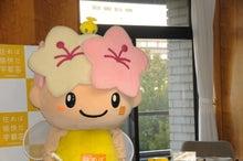 ミヤリー日記 宇都宮のマスコット「ミヤリー」の公式ブログ-15 ハッピ装着