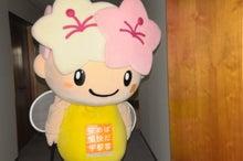 ミヤリー日記 宇都宮のマスコット「ミヤリー」の公式ブログ-02 ドキドキ