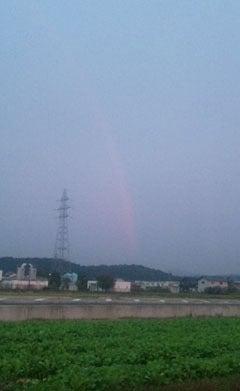 Dr.ミーヤンの下手っぴい釣りブログ-赤い虹,11,10/30