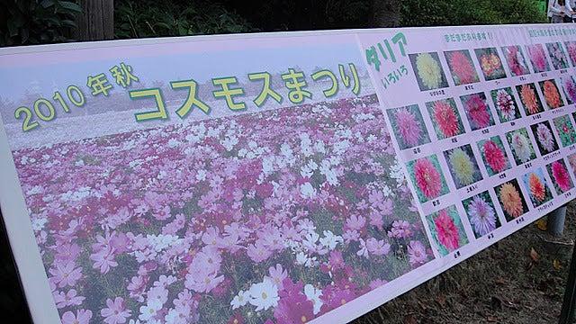 /stat.ameba.jp/user_images/20111105/15/pasobell/b5/30/j/o0640036011592378269.jpg