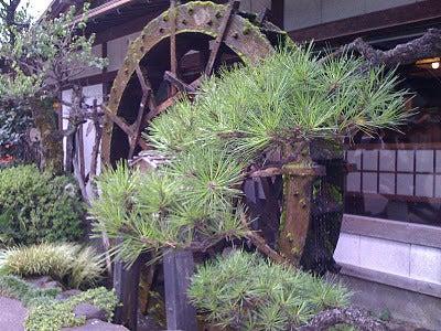 /stat.ameba.jp/user_images/20111105/15/pasobell/ef/88/j/o0400030011592376226.jpg