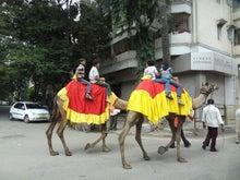 インド結婚式