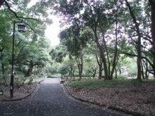 ☆OK WALK☆Aloha Walkingで美しく歩く☆心を磨いてメリハリボディを手に入れる♪ 世界に通じる「美しくカッコイイ歩き方」を身につける