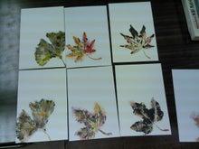 絵手紙あそび-葉っぱ1-1108