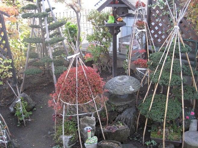 $歩き人ふみの徒歩世界旅行 日本・台湾編-冬囲い準備